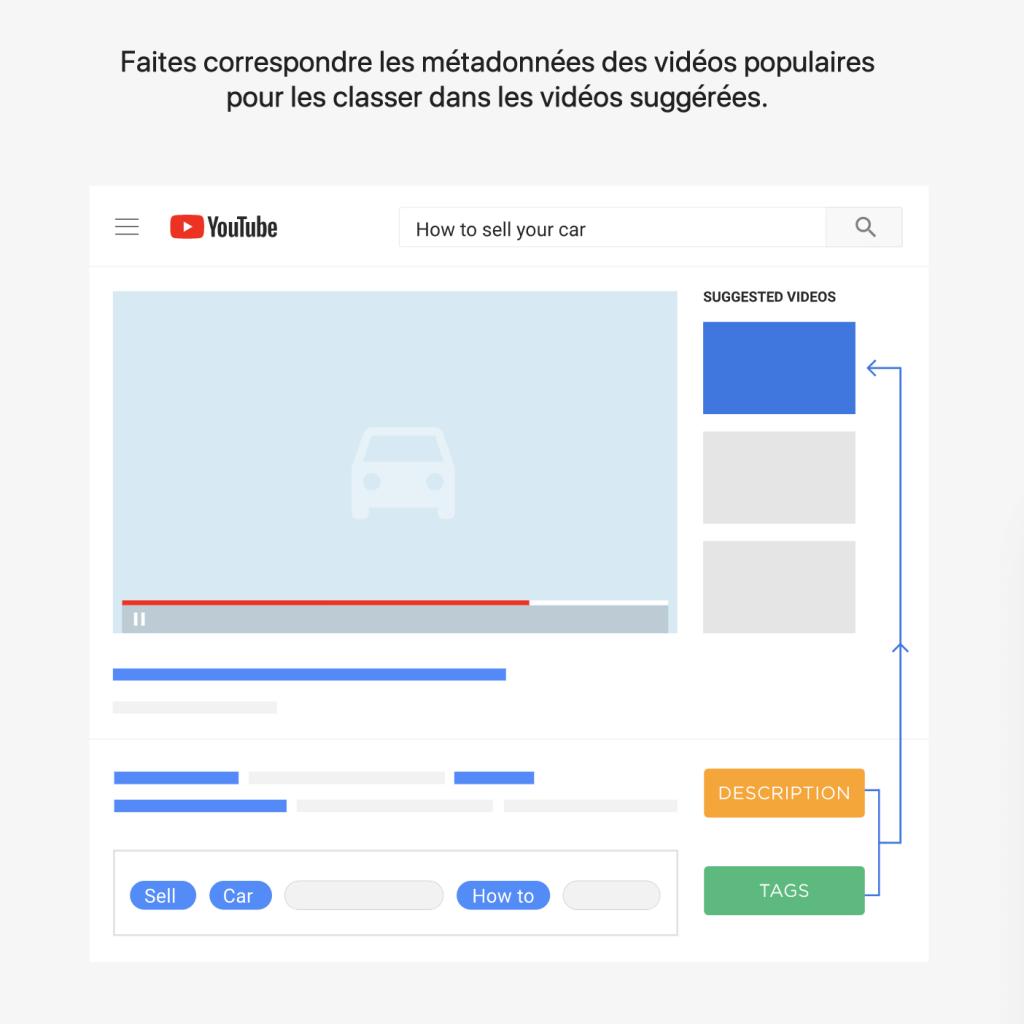Metadata videos populaires